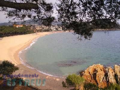 Playa de Lloret del Mar